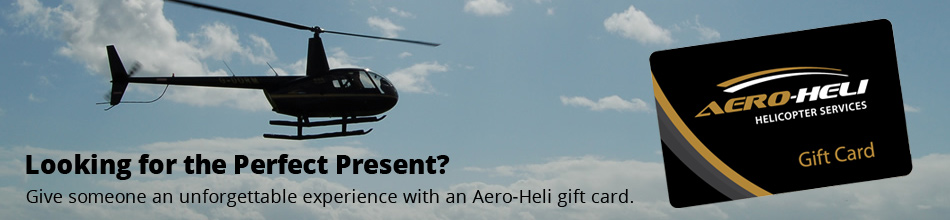 Introductory Flying Lessons at aero-heli